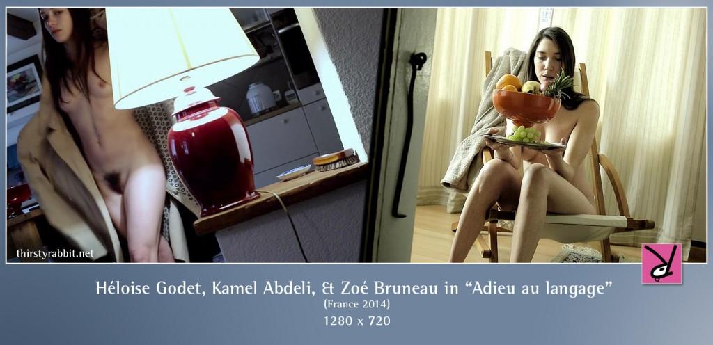 Héloise Godet, Kamel Abdeli, Zoé Bruneau, and Richard Chevallier nude in Adieu au langage aka Goodbye to Language