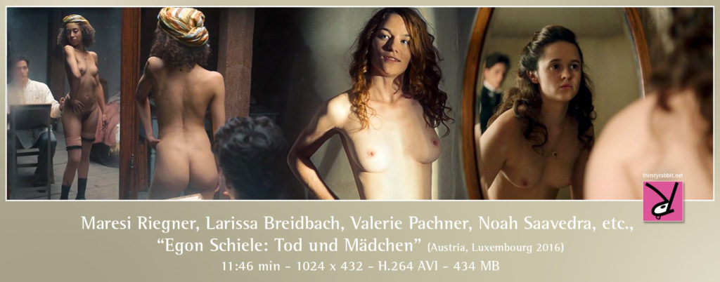 "Maresi Riegner, Larissa Breidbach, Valerie Pachner, and Noah Saavedra from the Austrian film, ""Egon Schiele: Death and the Maiden"" (2016)."